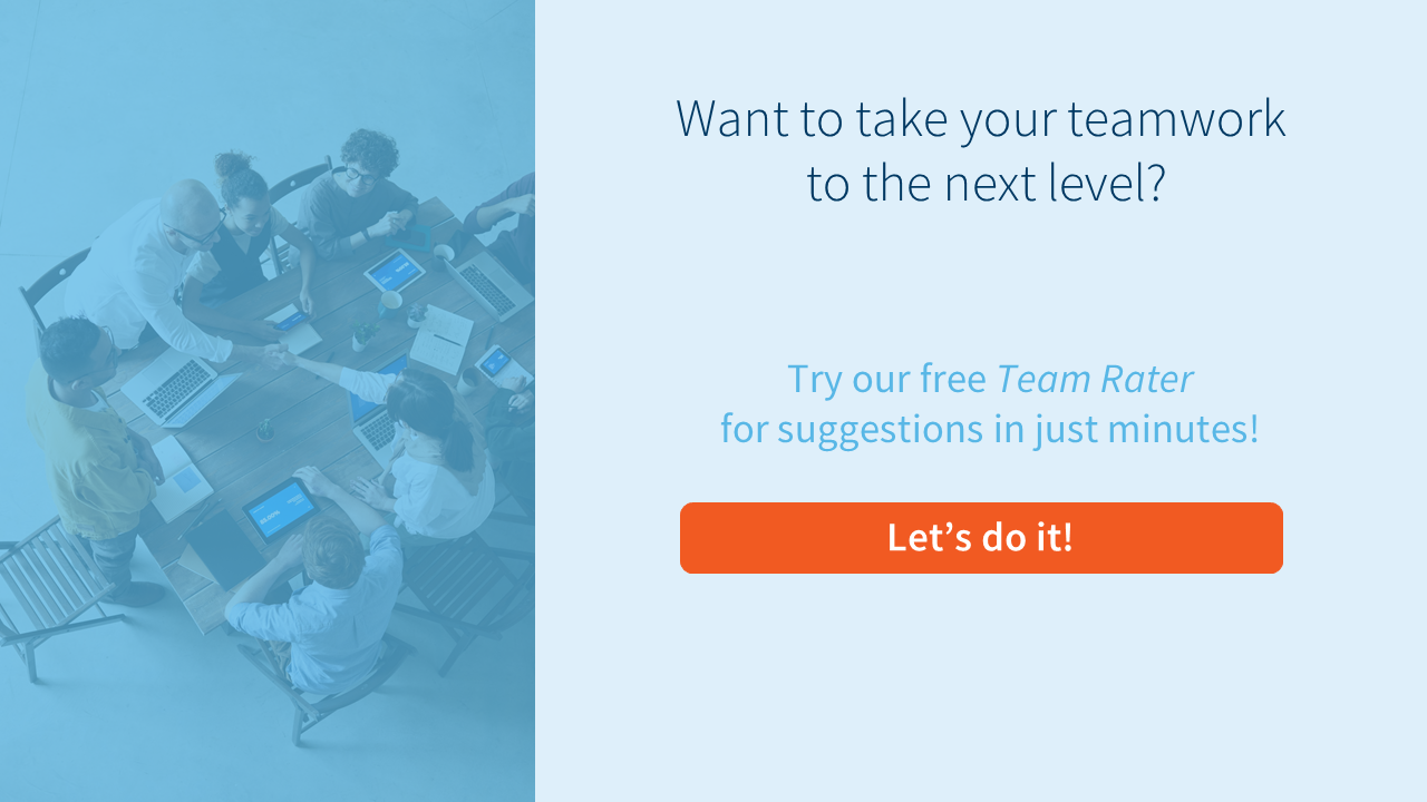 Try the free Team Rater!